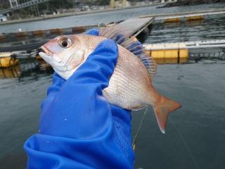 釣り納め2011