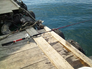 釣り初め2012