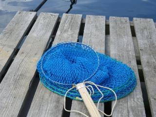 釣りに行かなきゃ!